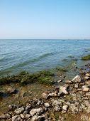 picture of azov  - Taganrog bay in Azov sea near the Taganrog city Russia - JPG