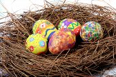 picture of easter eggs bunny  - five easter eggs sitting on a nest - JPG