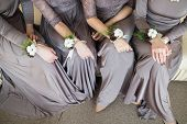������, ������: Bridesmaids With Wedding Bouquet Of Flowers