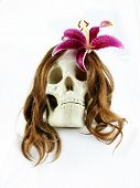 Skull with flower in hair
