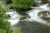White Water in Muskoka