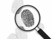 Magnifying Glass - Finger Prints