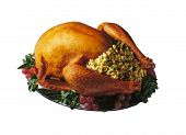 Baked Holiday Turkey on platter with garnish isolated over white