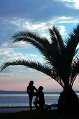 Two People Under The Palm Tree