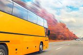Big Luxury Comfortable Tourist Bus Driving Through Golden Autumn Tree Highway On Bright Sunny Day. B poster