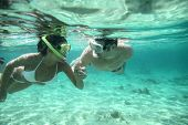 Couple snorkeling in Caribbean waters