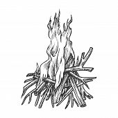 Traditional Burning Timbered Stick Vintage Vector. Burning Tree Wood Branches For Inflaming Flame. H poster