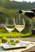 Famous German Quality White Wine Riesling, Produced In Mosel Wine Regio From White Grapes Growing On poster