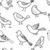 Bird Seamless Pattern. Background With Cute Hand Drawn Bird Doodles. Black On White Vector . Backgro poster
