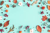 Autumn Or Winter Composition. Dried Leaves, Cotton Flowers On Pastel Blue Background. Autumn, Fall,  poster