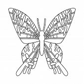 Vector Design Of Butterfly And Zoology Symbol. Set Of Butterfly And Wildlife Stock Symbol For Web. poster