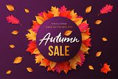 Autumn Sale Background, Banner, Poster Or Flyer Design. Vector Illustration With Bright Beautiful Le poster