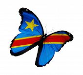 Democratic Republic Of The Congo Flag Butterfly Flying, Isolated On White Background
