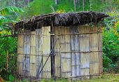 Ancient wooden huts in woods