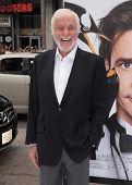 LOS ANGELES - JUN 12:  Dick Van Dyke arriving to