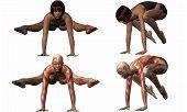 Female Anatomic Body - Yoga