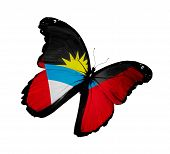 Antigua And Barbuda Flag Butterfly Flying, Isolated On White Background