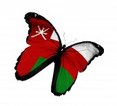 Omani Flag Butterfly Flying, Isolated On White Background