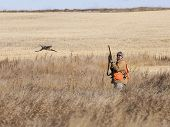 foto of ringneck  - Pheasant Hunting out on the prairie in North Dakota - JPG