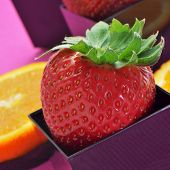 Постер, плакат: клубника и апельсиновые дольки в кубические и круглые чаши