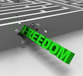 Freedom From Maze Shows Liberty
