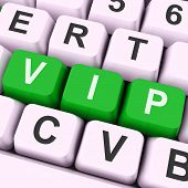 Vip Key Means Dignitary Or Very Important Person.