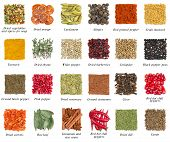 picture of barberry  - Set of spices isolated on white background - JPG