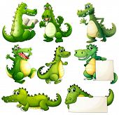 stock photo of crocodile  - Illustration of the eight scary crocodiles on a white background - JPG
