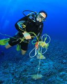 Scuba Diver cleans up trash polluting coral reef