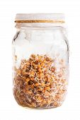 Sprouting Weat Seeds Growing In A Glass Jar