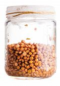 Wet Sprouting Lentils In A Glass Jar