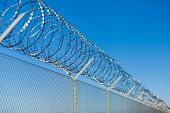 image of coiled  - Coiled razor wire with its sharp steel barbs on top of a wire mesh perimeter fence ensuring safety and security preventing access or the escape of prisoners blue sky background - JPG