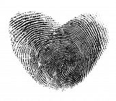 picture of dna fingerprinting  - fingerprint heart isolated on white - JPG