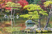 Kyoko-chi Pond at Kinkakuji Temple in Kyoto
