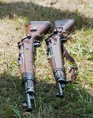 Two Rifles In The Grass