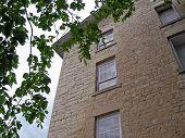 Old Flour Mill Windows