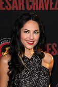 LOS ANGELES - MAR 20:  Barbara Mori at the