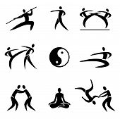 picture of karate-do  - Simple Sport Pictogram  Asian Martial Arts Icons - JPG