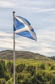 image of braveheart  - The Scottish flag blows in the wind as Scotland gets ready to vote for independence from the UK - JPG
