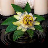 Spa Setting Of Passiflora Flower, Green Leaf With Drop, Towels And Candles On Zen Stones In Ripple R