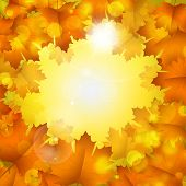 Abstract Autumn Yellow Background