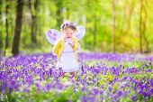 Toddler Girl In Fairy Costume In Bluebell Forest