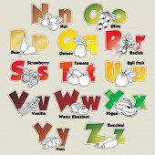Fruits and vegetables alphabet from N to Z- vector eps 10 illustration