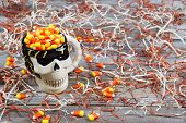 Closeup Of Scary Halloween Skeleton Skull Cup Filled With Candy