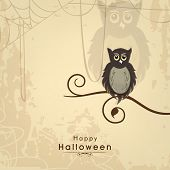 Scary owl sitting on a dead tree branch on grungy beige background for Halloween night party poster,