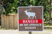 Wildlife Danger Sign