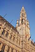 The buildings of the Grand Place of Brussels, Belgium