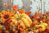 pic of gourds  - Colorful autumn display with a squash fruit surrounded by decorative gourds and flowers against wooden texture background - JPG