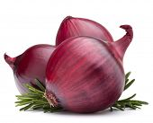red onion and rosemary leaves  isolated on white background cutout