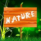 Natural Nature Means Rural Green And Genuine